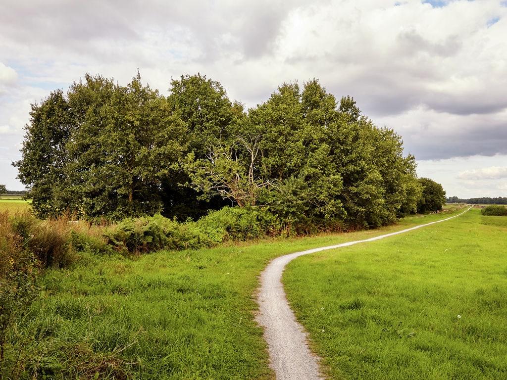 Ferienhaus Gemütlicher Bauernhof in Eexterzandvoort mit eigenem Garten (116505), Eexterzandvoort, , Drenthe, Niederlande, Bild 20