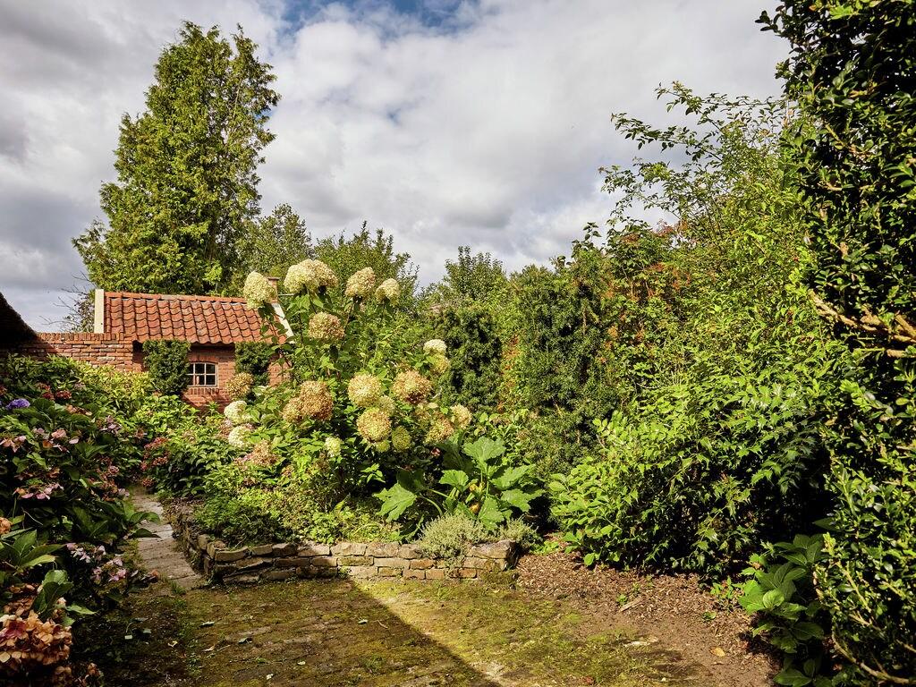 Ferienhaus Gemütlicher Bauernhof in Eexterzandvoort mit eigenem Garten (116505), Eexterzandvoort, , Drenthe, Niederlande, Bild 15