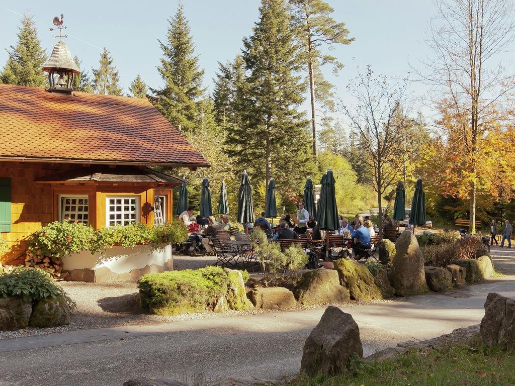 Ferienwohnung Tonbach (255332), Baiersbronn, Schwarzwald, Baden-Württemberg, Deutschland, Bild 20