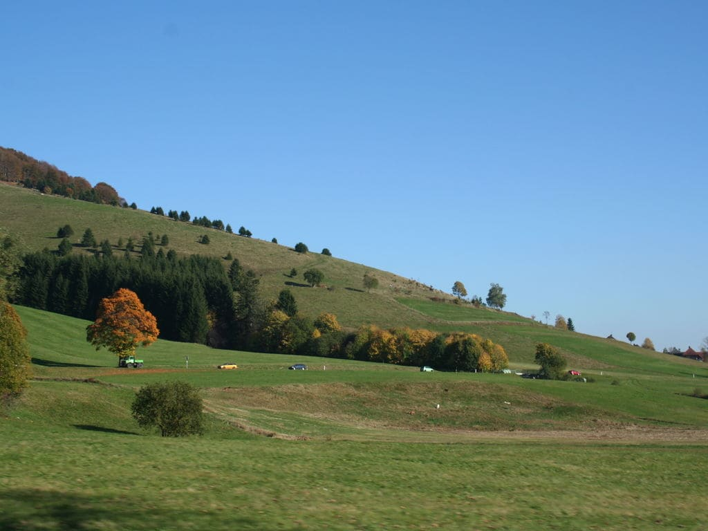 Ferienwohnung Tonbach (255332), Baiersbronn, Schwarzwald, Baden-Württemberg, Deutschland, Bild 22