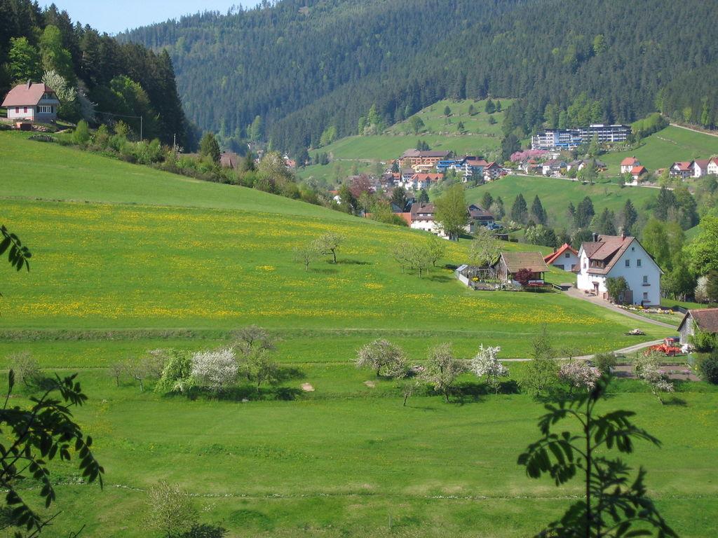 Ferienwohnung Tonbach (255332), Baiersbronn, Schwarzwald, Baden-Württemberg, Deutschland, Bild 2