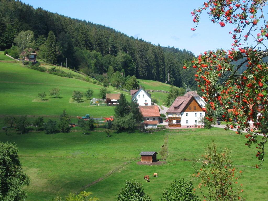 Ferienwohnung Tonbach (255332), Baiersbronn, Schwarzwald, Baden-Württemberg, Deutschland, Bild 3