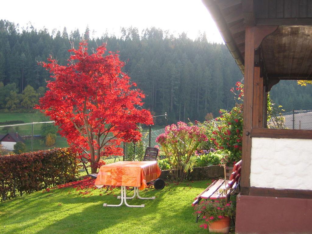 Ferienwohnung Tonbach (255332), Baiersbronn, Schwarzwald, Baden-Württemberg, Deutschland, Bild 19