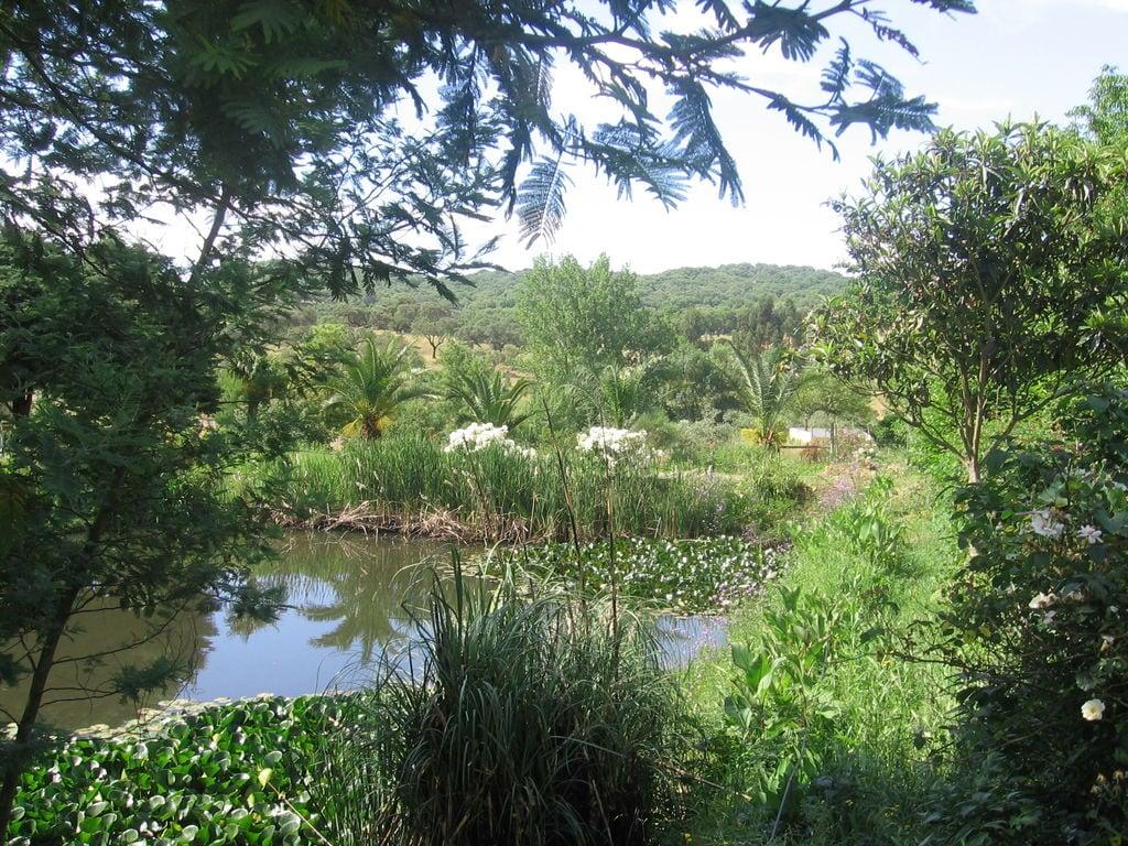Ferienhaus Panorama-Bauernhof in Montemor-o-Novo mit Pool (178208), Montemor-o-Novo, , Alentejo, Portugal, Bild 27