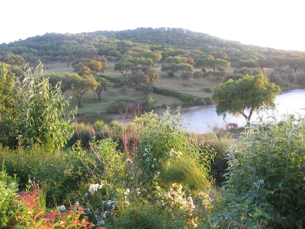 Ferienhaus Panorama-Bauernhof in Montemor-o-Novo mit Pool (178208), Montemor-o-Novo, , Alentejo, Portugal, Bild 28