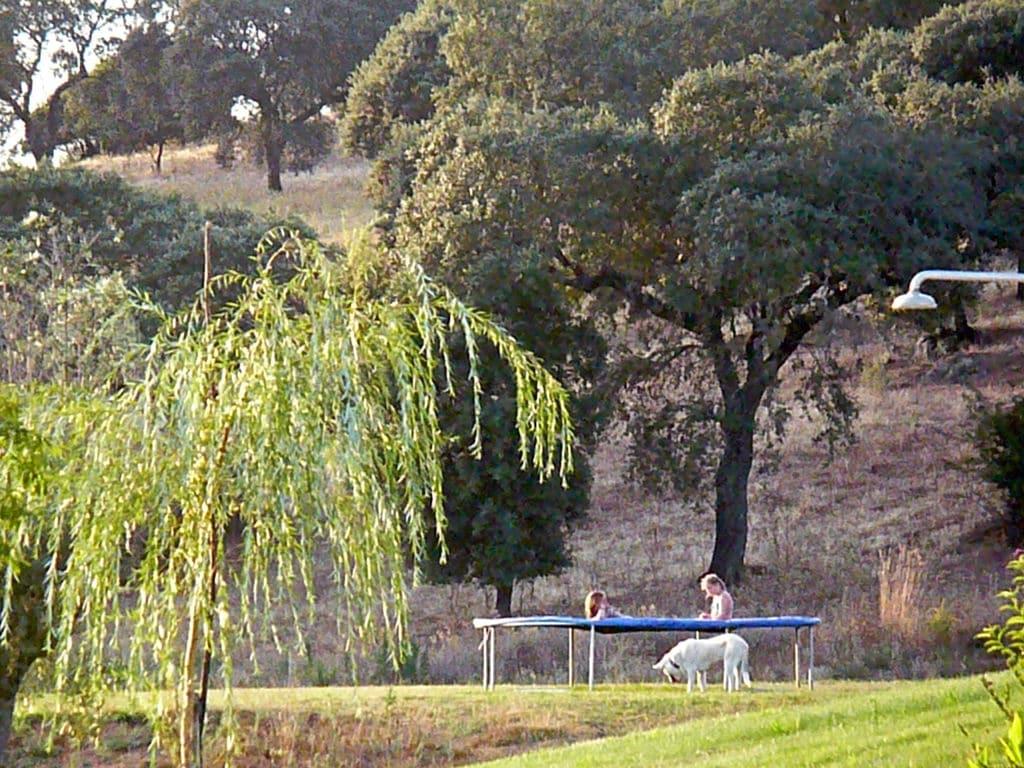Ferienhaus Gemütlicher Bauernhof mit Swimmingpool in Montemor-o-Novo (178205), Montemor-o-Novo, , Alentejo, Portugal, Bild 18