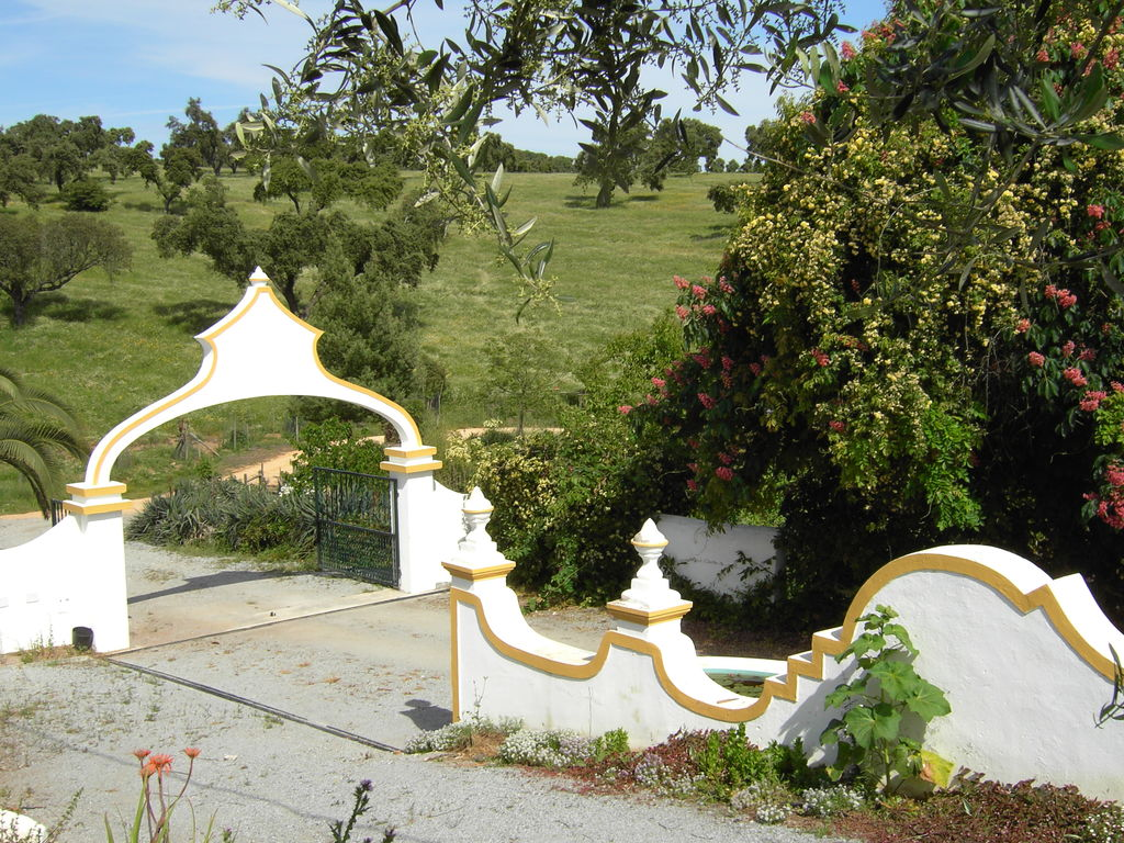 Ferienhaus Gemütlicher Bauernhof mit Swimmingpool in Montemor-o-Novo (178205), Montemor-o-Novo, , Alentejo, Portugal, Bild 21