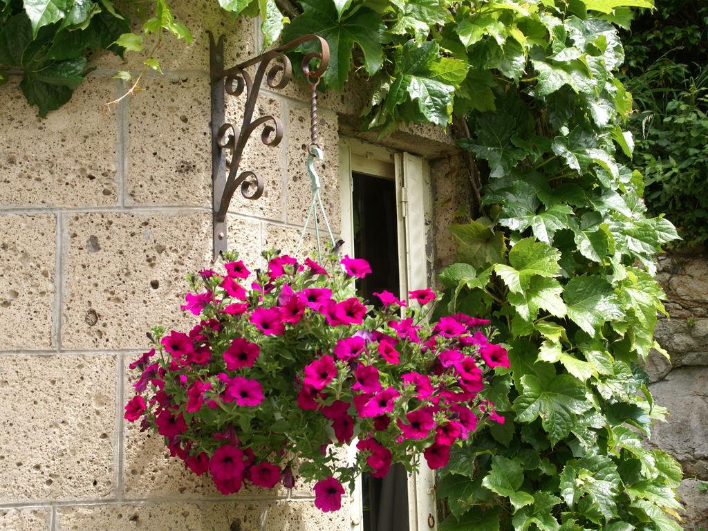 Holiday apartment Gîte romantique (118593), Saint Nectaire, Puy-de-Dôme, Auvergne, France, picture 25