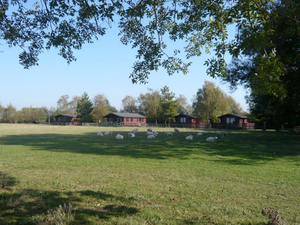 Maison de vacances Tore Petty (119735), Brookland, Kent, Angleterre, Royaume-Uni, image 2