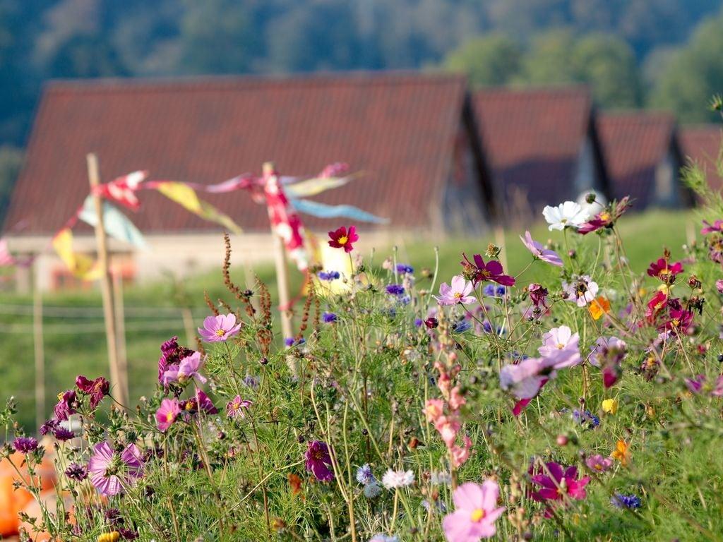 Ferienhaus Authentisches Holz-Ferienhaus in ruhiger grüner Umgebung (256245), Buigny St Maclou, Somme, Picardie, Frankreich, Bild 30