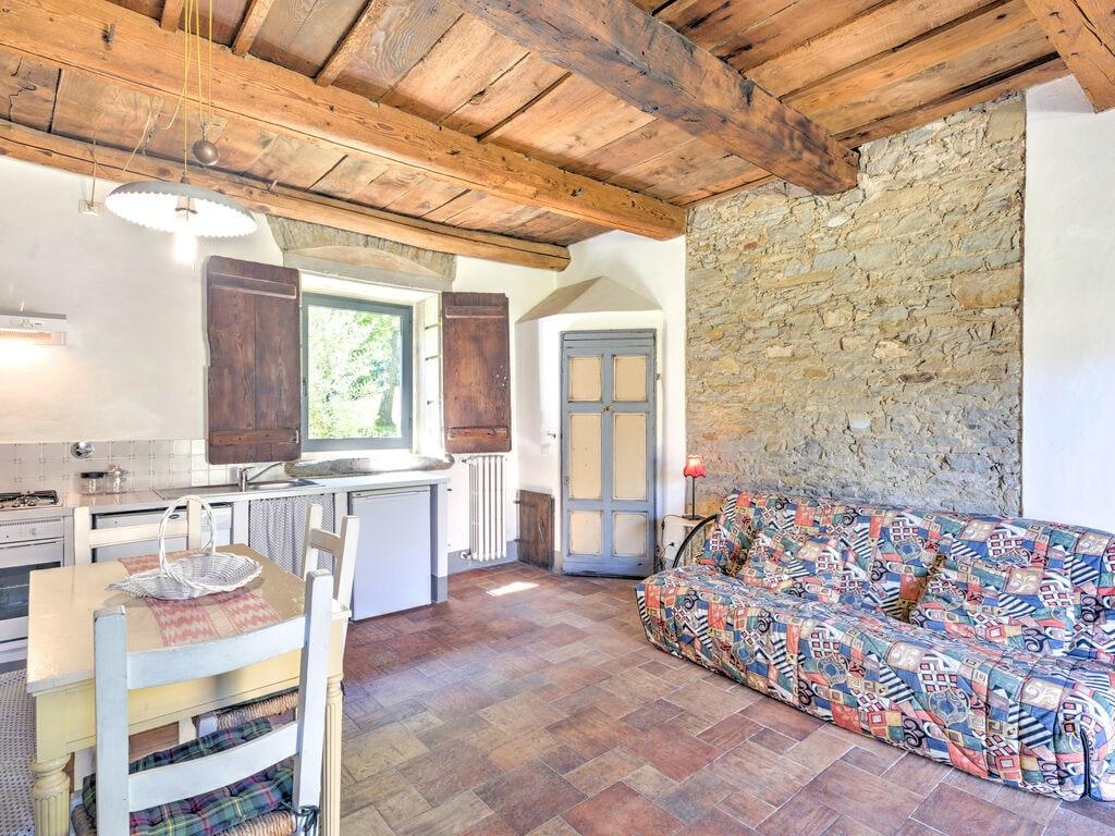 Ferienhaus Gemütliches Appartement in San Godenzo mit Pool (133927), Pelago, Florenz - Chianti - Mugello, Toskana, Italien, Bild 15