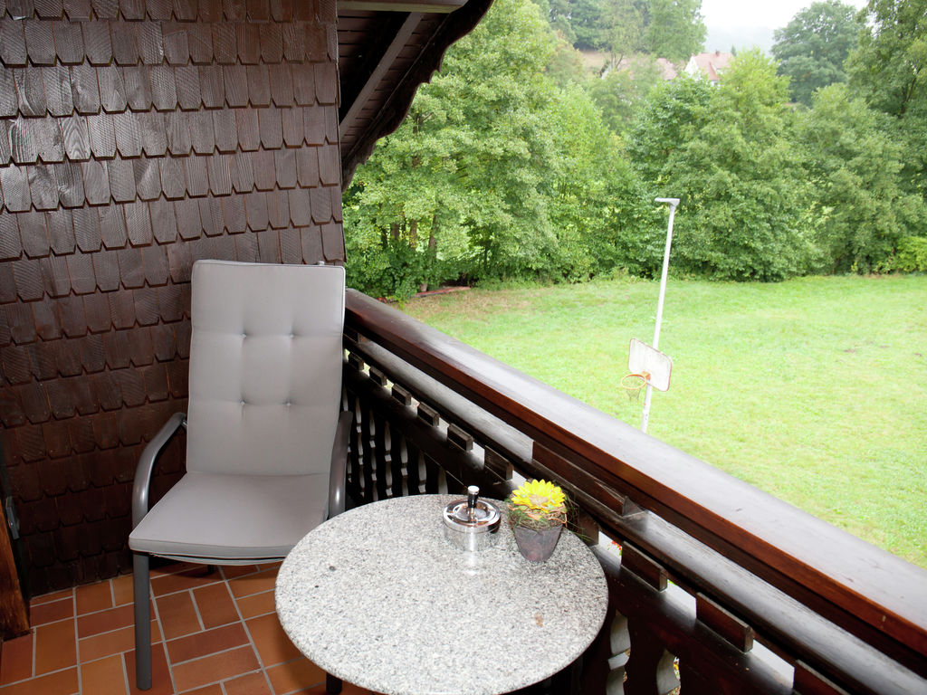 Holiday apartment Boutique-Wohnung mit Balkon und Terrasse in Hüttenthal (134049), Mossautal, Odenwald (Hesse), Hesse, Germany, picture 21