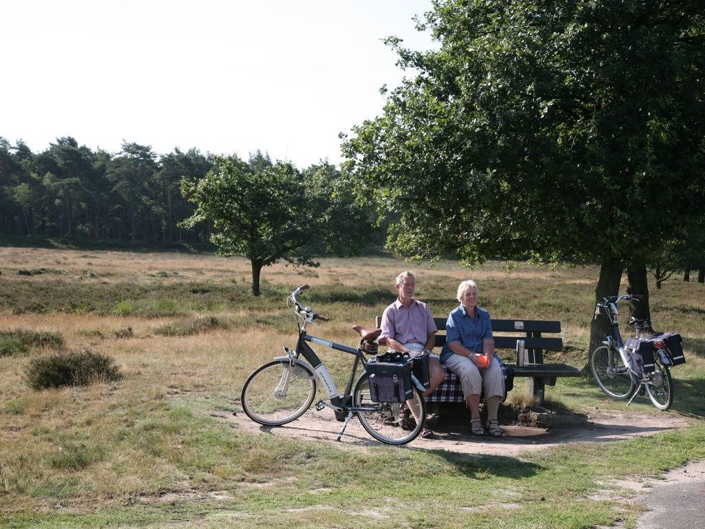 Ferienhaus Freist. Ferienhaus mit 2 Badezimmern, im Naturschutzgebiet (257023), Laaghalen, , Drenthe, Niederlande, Bild 28