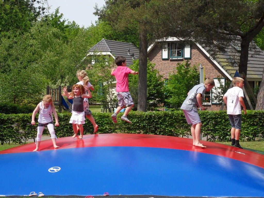 Ferienhaus Freist. Ferienhaus mit 2 Badezimmern, im Naturschutzgebiet (257023), Laaghalen, , Drenthe, Niederlande, Bild 20