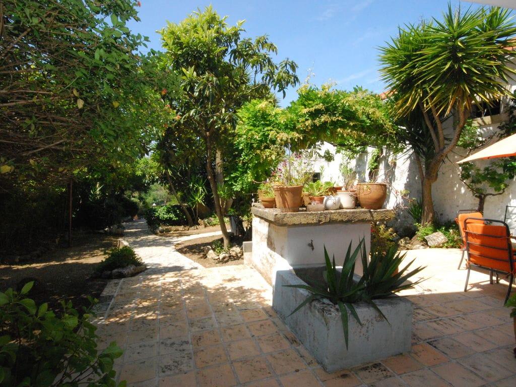Ferienhaus Authentischer Bauernhof in Soudos mit Garten (133899), Torres Novas, , Zentral-Portugal, Portugal, Bild 29