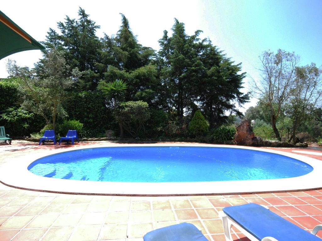 Ferienhaus Authentischer Bauernhof in Soudos mit Garten (133899), Torres Novas, , Zentral-Portugal, Portugal, Bild 10