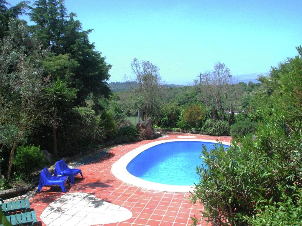 Ferienhaus Authentischer Bauernhof in Soudos mit Garten (133899), Torres Novas, , Zentral-Portugal, Portugal, Bild 36