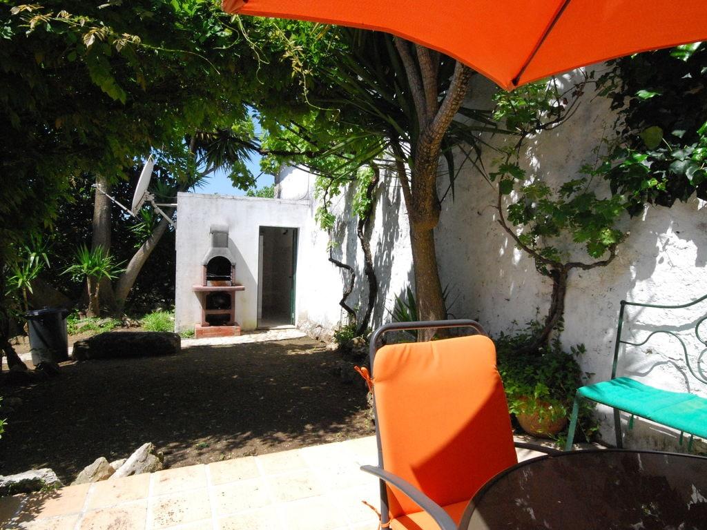 Ferienhaus Authentischer Bauernhof in Soudos mit Garten (133899), Torres Novas, , Zentral-Portugal, Portugal, Bild 28