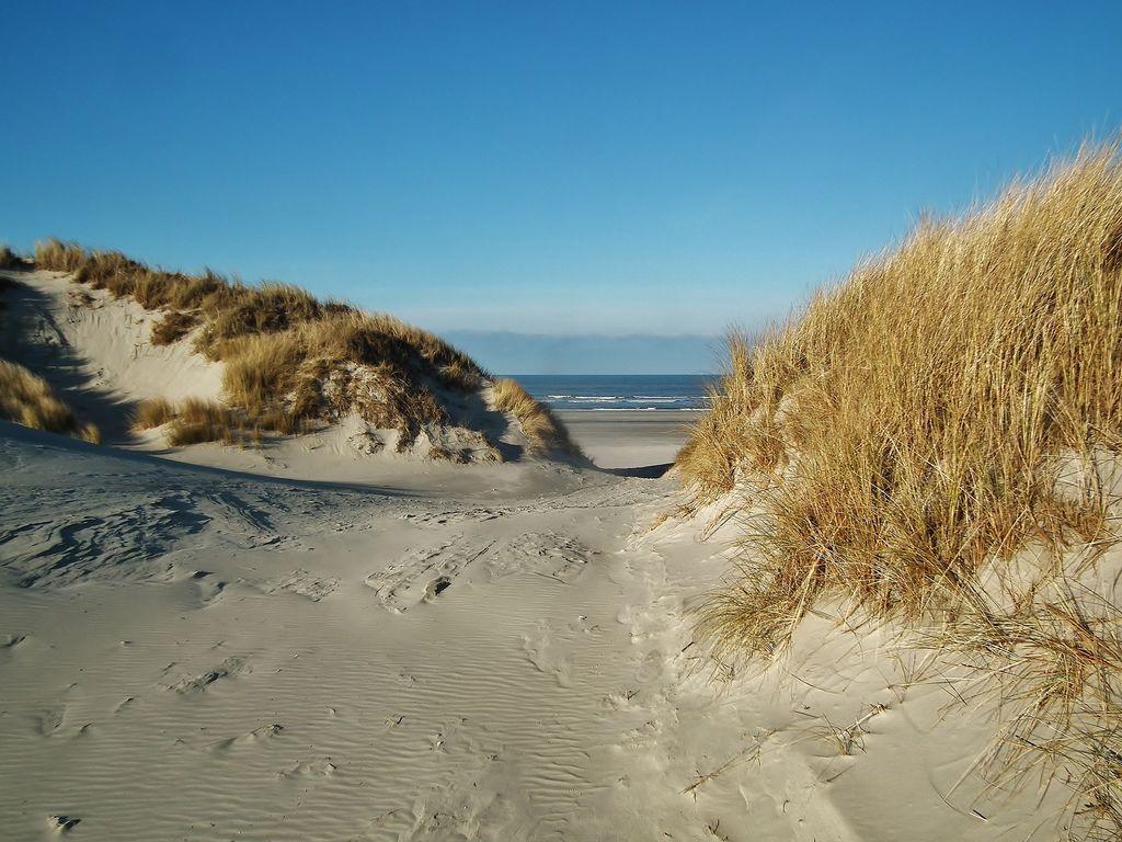 Ferienwohnung Vleijenhof 4 (76184), Buren FR, Ameland, Friesland (NL), Niederlande, Bild 17