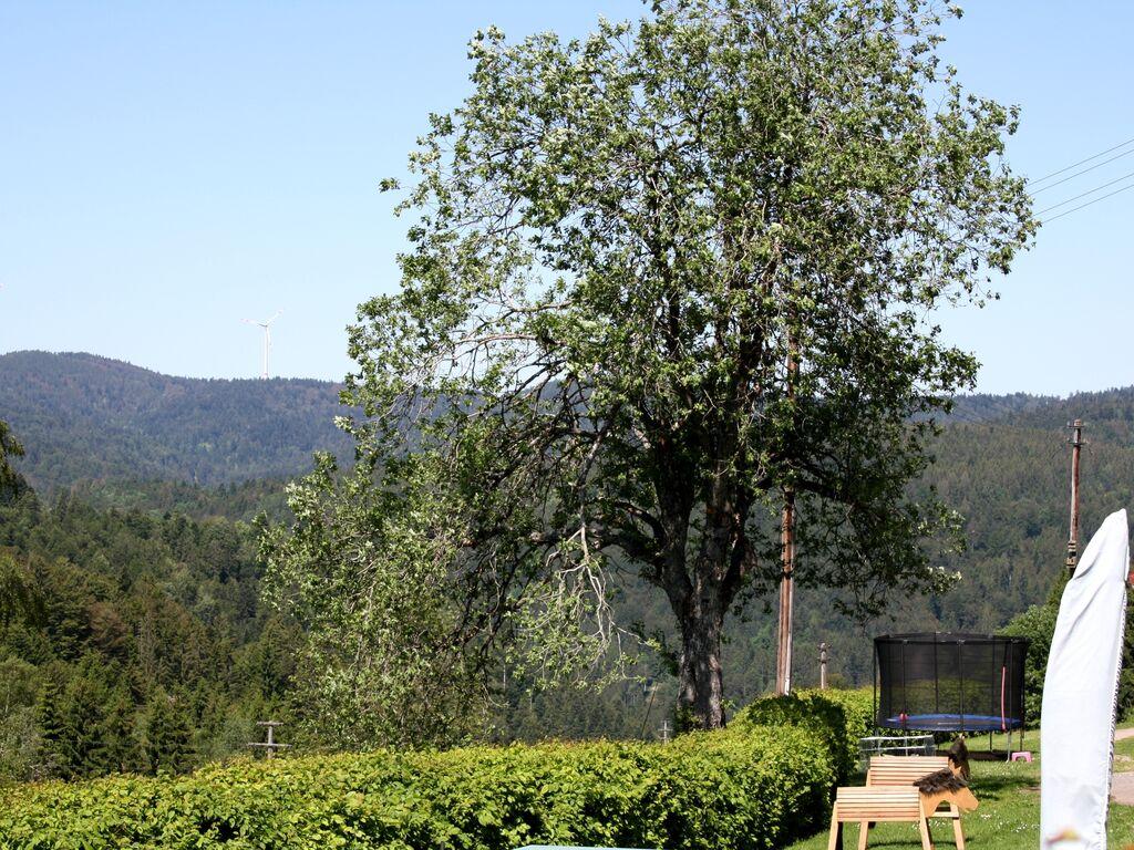 Ferienwohnung Großzügige Ferienwohnung in ruhiger Lage mit Balkon (255394), Herrischried, Schwarzwald, Baden-Württemberg, Deutschland, Bild 32