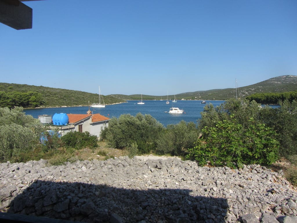 Ferienhaus Murtelica (140115), Pasman, Insel Pasman, Dalmatien, Kroatien, Bild 28