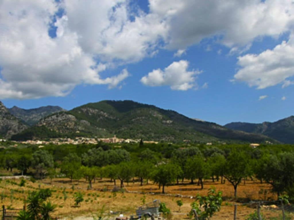 Ferienhaus Volta (342413), Selva (ES), Mallorca, Balearische Inseln, Spanien, Bild 18