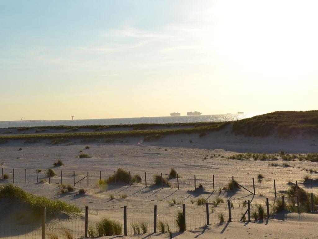 Ferienhaus Einzigartiger Bungalow auf den Dünen nur 200 m vom Strand (153950), 's-Gravenzande, , Südholland, Niederlande, Bild 31