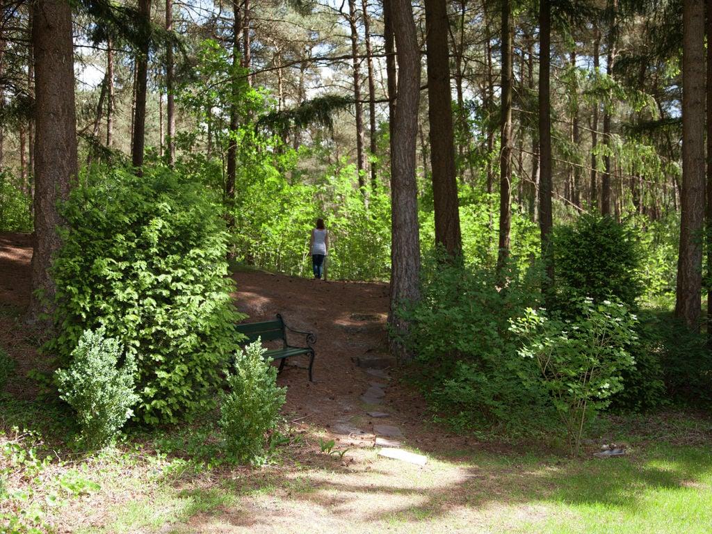 Ferienhaus Romantische Villa mit Geschirrspüler, nahe dem Nationalpark (264623), Diever, , Drenthe, Niederlande, Bild 20