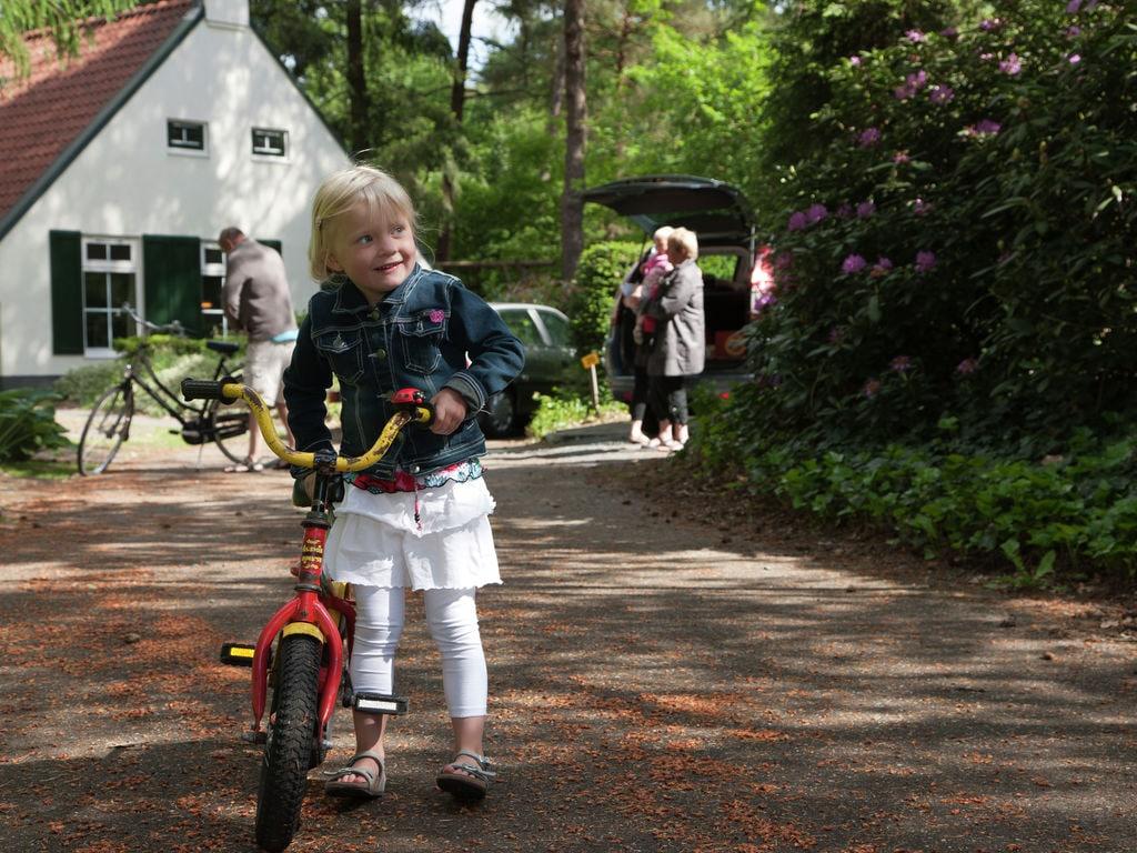 Ferienhaus Romantische Villa mit Geschirrspüler, nahe dem Nationalpark (264623), Diever, , Drenthe, Niederlande, Bild 22