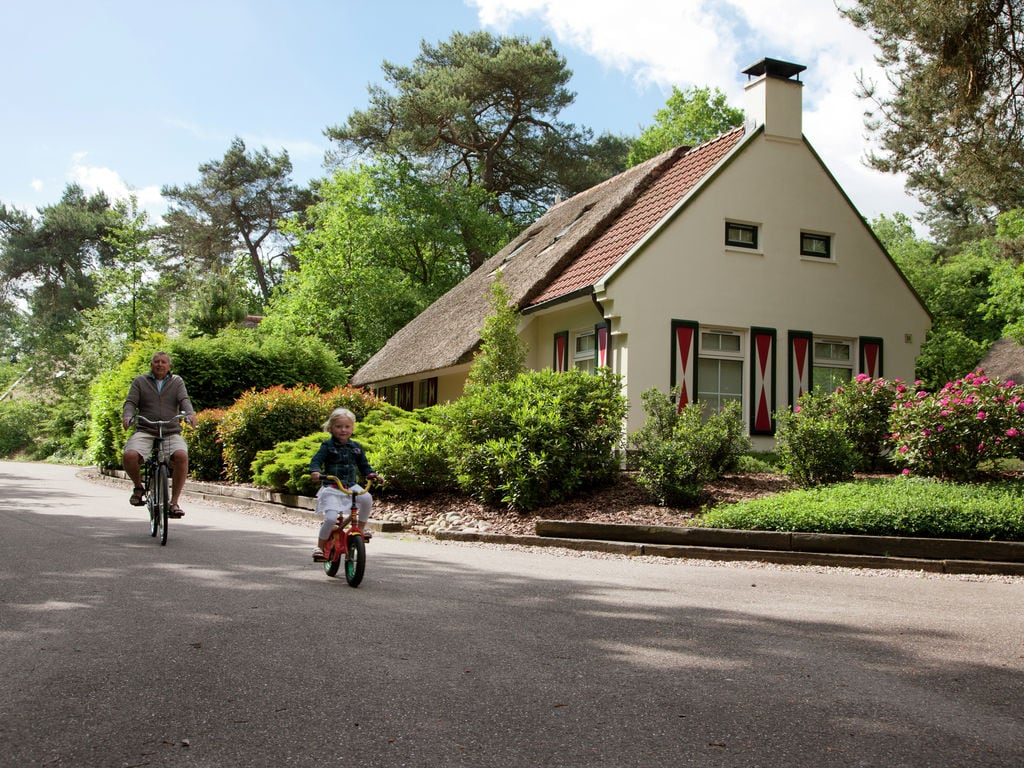 Ferienhaus Romantische Villa mit Geschirrspüler, nahe dem Nationalpark (264623), Diever, , Drenthe, Niederlande, Bild 21