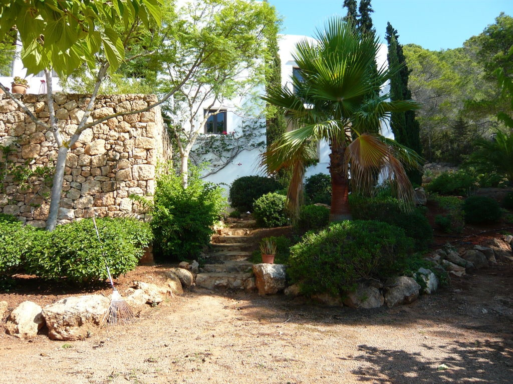 Ferienhaus Geräumige Villa mit Swimmingpool auf Ibiza (562954), San Carlos de Peralta, Ibiza, Balearische Inseln, Spanien, Bild 31