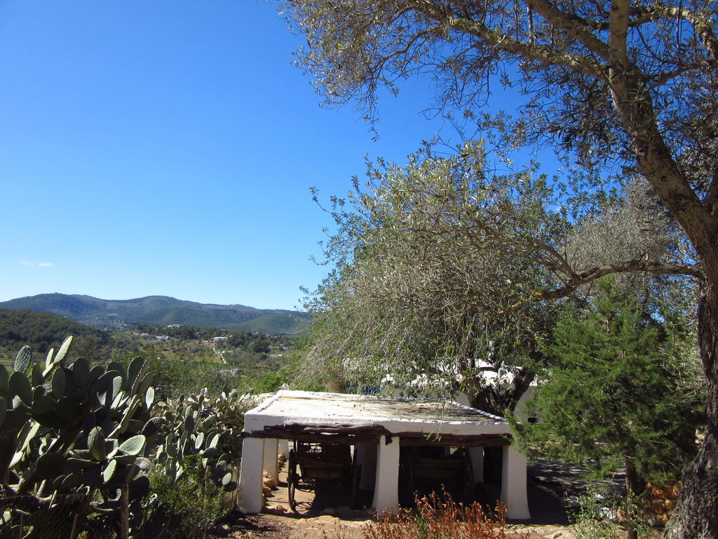 Ferienhaus Geräumige Villa mit Swimmingpool auf Ibiza (562954), San Carlos de Peralta, Ibiza, Balearische Inseln, Spanien, Bild 40
