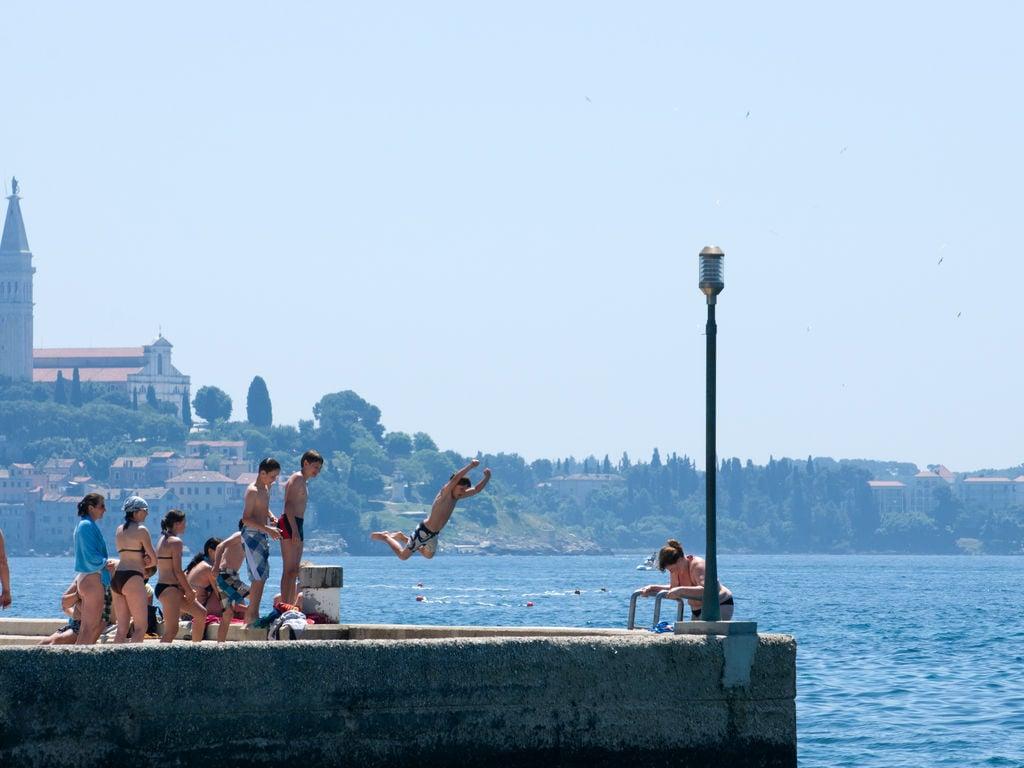 Ferienhaus Komfortables Ferienhaus mit Mikrowelle, 5 km von Rovinj (256425), Rovinj, , Istrien, Kroatien, Bild 13