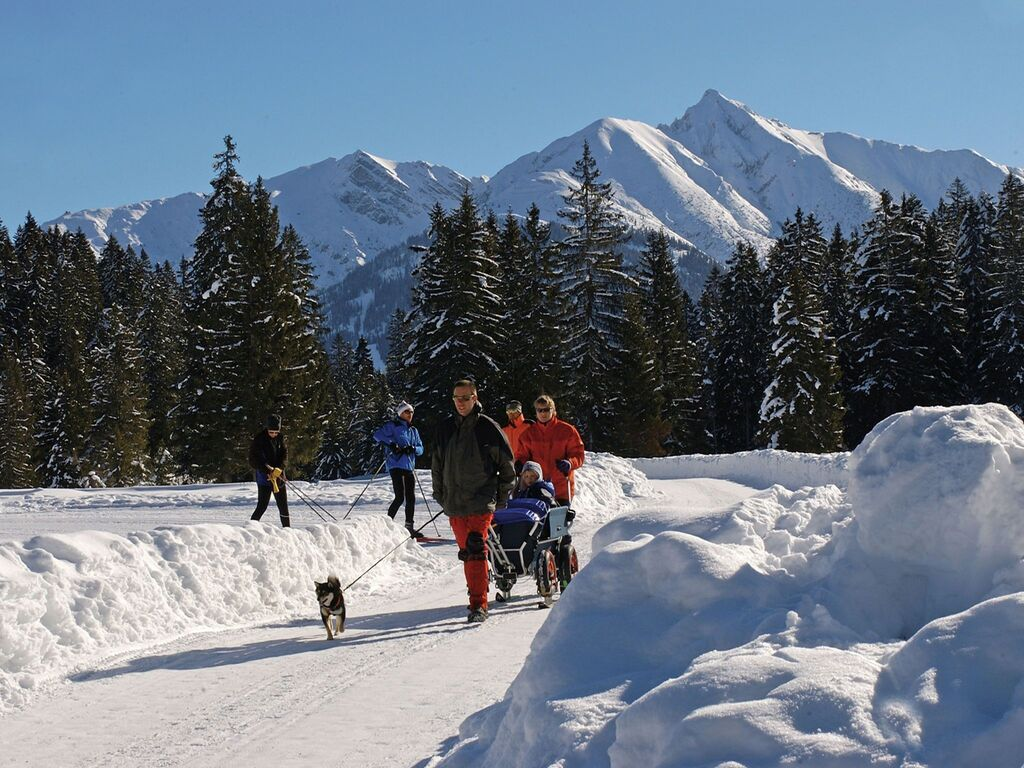 Ferienwohnung Am Rand des Zentrums von Seefeld und doch ruhig gelegen (253684), Seefeld in Tirol, Seefeld, Tirol, Österreich, Bild 22