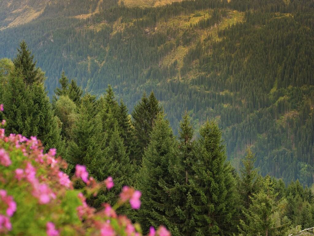 Appartement de vacances Am Kristberg (1083015), Silbertal, Montafon, Vorarlberg, Autriche, image 27