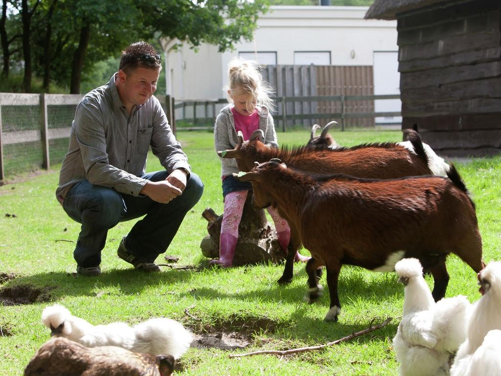Ferienhaus Landgoed 't Wildryck 5 (264625), Dieverbrug, , Drenthe, Niederlande, Bild 13