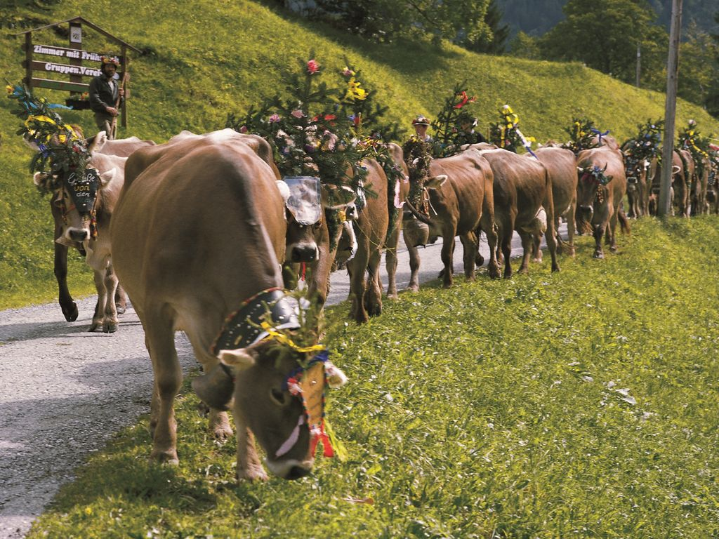Ferienwohnung Irene (254026), Vandans, Montafon, Vorarlberg, Österreich, Bild 19