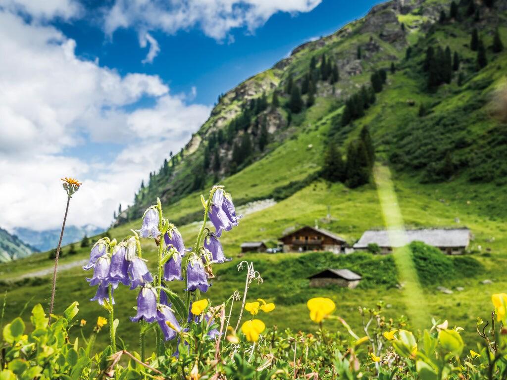 Ferienwohnung Irene (254026), Vandans, Montafon, Vorarlberg, Österreich, Bild 21