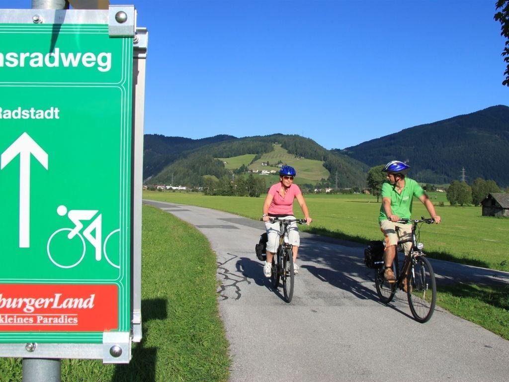 Appartement de vacances Zonnen Alp (253588), Forstau, Pongau, Salzbourg, Autriche, image 25