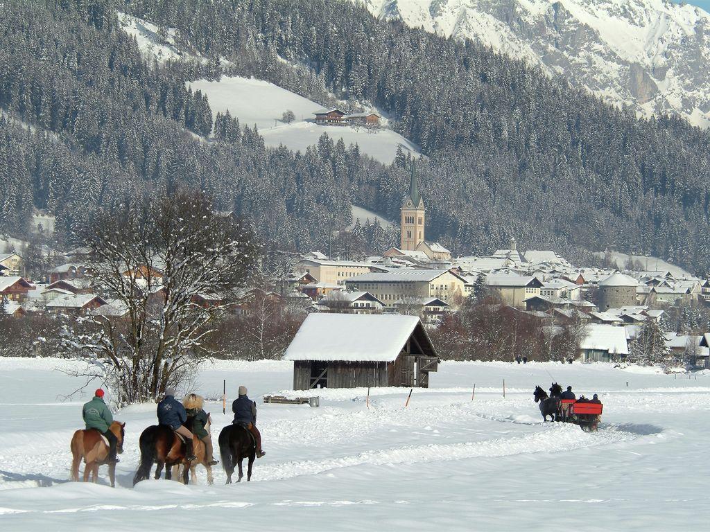 Appartement de vacances Zonnen Alp (253588), Forstau, Pongau, Salzbourg, Autriche, image 30
