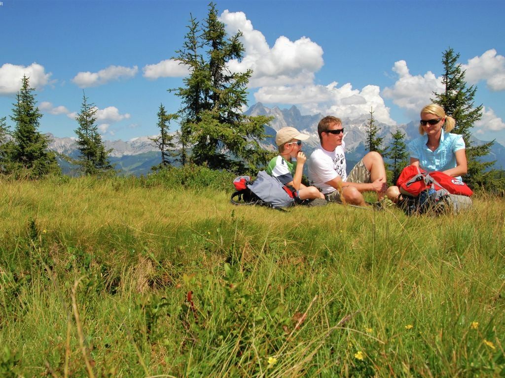 Appartement de vacances Zonnen Alp (253588), Forstau, Pongau, Salzbourg, Autriche, image 24