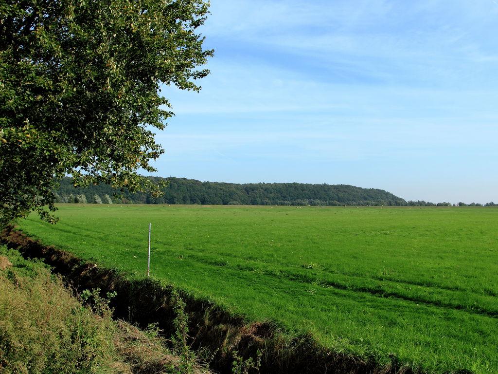 Ferienhaus Freistehendes Ferienhaus mit schönem Garten in der Betuwe (214467), Kesteren, Rivierenland, Gelderland, Niederlande, Bild 9