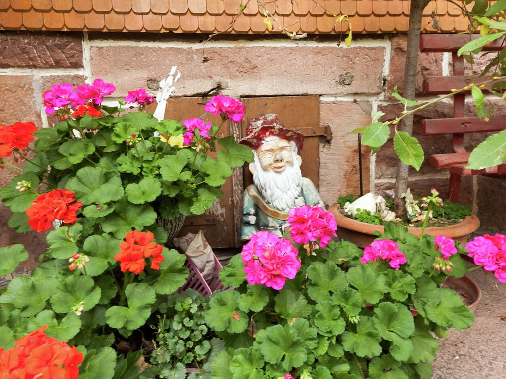 Ferienwohnung Fahrner (255337), Baiersbronn, Schwarzwald, Baden-Württemberg, Deutschland, Bild 25