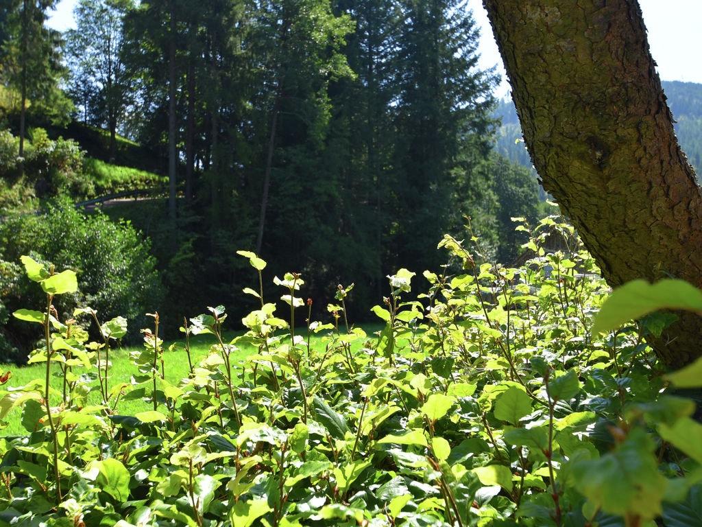 Ferienwohnung Fahrner (255337), Baiersbronn, Schwarzwald, Baden-Württemberg, Deutschland, Bild 15