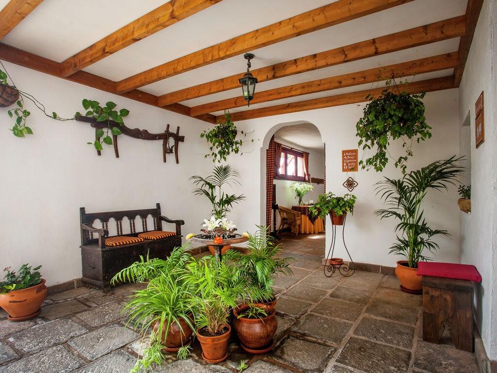 Appartement de vacances Eco-Nature-Beach (218282), San Miguel, Ténérife, Iles Canaries, Espagne, image 15