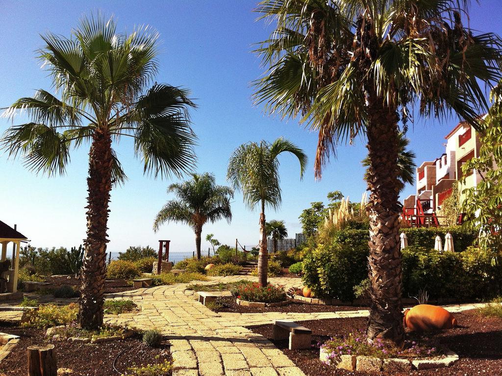 Appartement de vacances Eco-Nature-Beach (218282), San Miguel, Ténérife, Iles Canaries, Espagne, image 12
