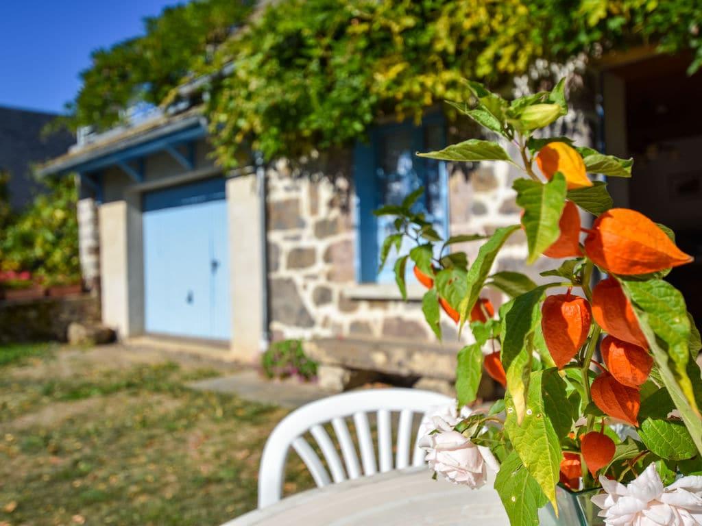Holiday house Maison près des volcans d'Auvergne (255930), Vic sur Cère, Cantal, Auvergne, France, picture 35