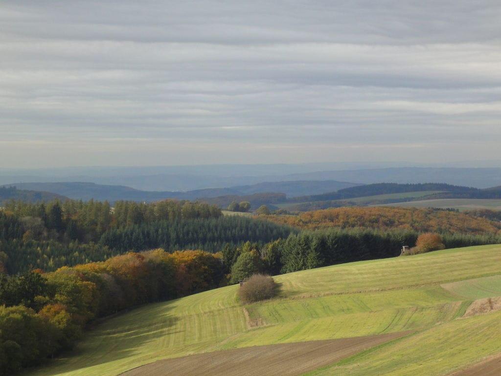 Ferienhaus Land-Ferienhaus in Hügellandschaft in Kleinich, Deutschland (221855), Kleinich, Hunsrück, Rheinland-Pfalz, Deutschland, Bild 21