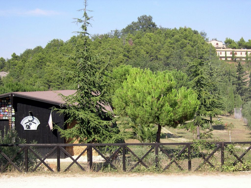 Ferienhaus mit Bergblick in Montelparo Marche mit Pool (256835), Falerone, Fermo, Marken, Italien, Bild 19