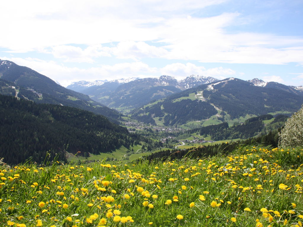 Ferienwohnung Geräumiges Apartment mit Garten beim Skigebiet in Wagrain (253603), Wagrain, Pongau, Salzburg, Österreich, Bild 26